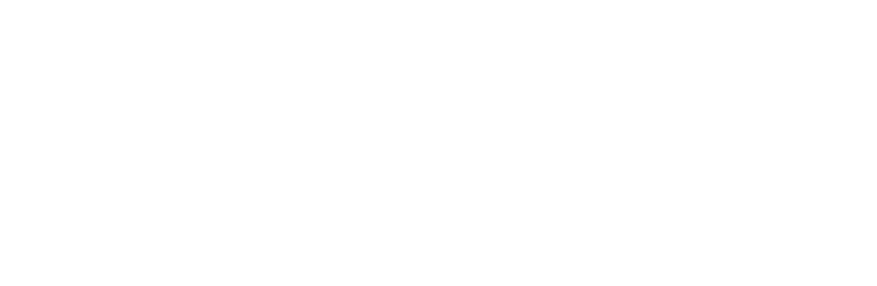 I LOVE Network logo
